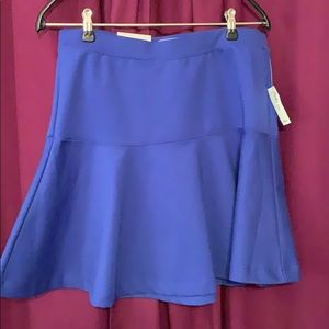 Pretty Colbalt Blue Mini Skirt